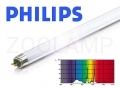 PHILIPS Aquarelle 24W 549mm 10000K 1050lm T5